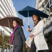 Senz Regenschirm