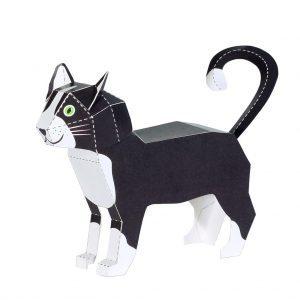 Pukaca Katze